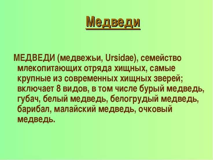 Медведи МЕДВЕДИ (медвежьи, Ursidae), семейство млекопитающих отряда хищных, с...