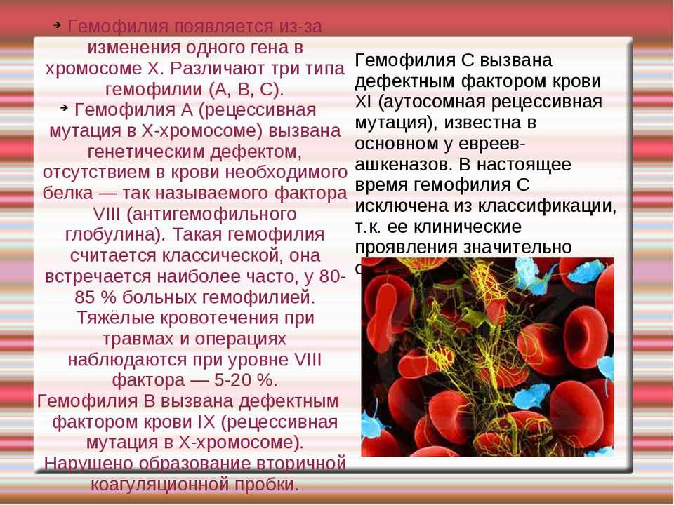 Гемофилия появляется из-за изменения одного гена в хромосоме X. Различают три...