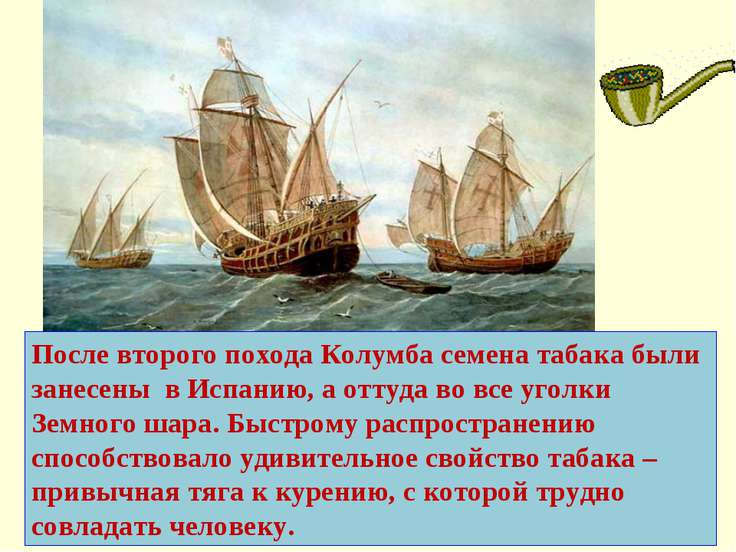 После второго похода Колумба семена табака были занесены в Испанию, а оттуда ...