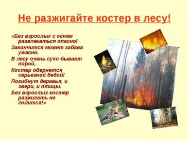 Не разжигайте костер в лесу! «Без взрослых с огнем развлекаться опасно! Закон...