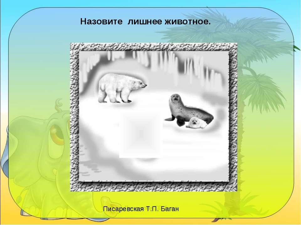 Назовите лишнее животное. Писаревская Т.П. Баган