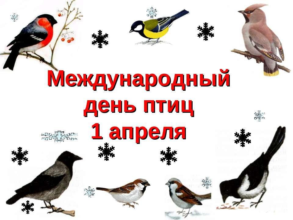 Международный день птиц 1 апреля