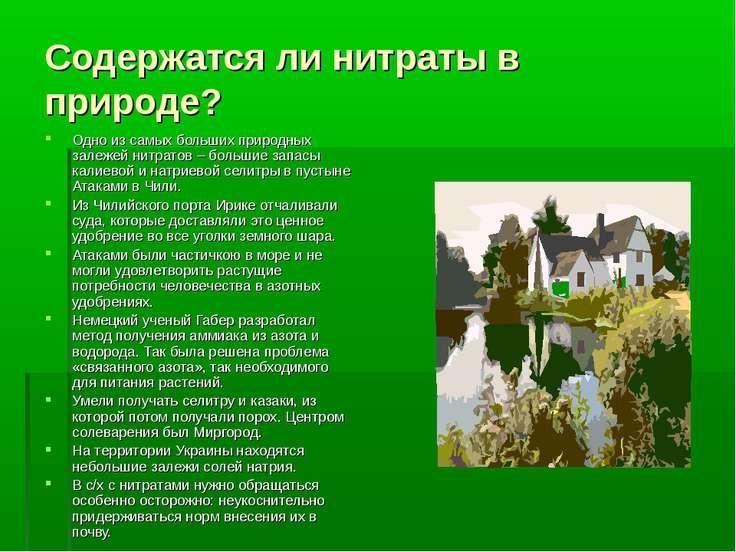 Содержатся ли нитраты в природе? Одно из самых больших природных залежей нитр...