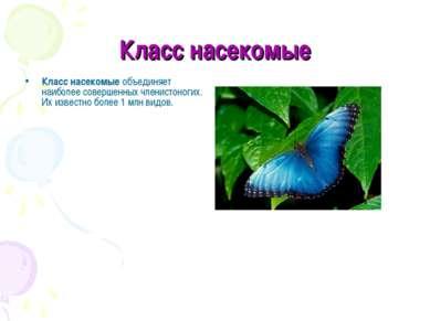 Класс насекомые Класс насекомыеобъединяет наиболее совершенных членистоногих...