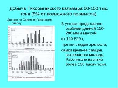 Добыча Тихоокеанского кальмара 50-150 тыс. тонн (5% от возможного промысла). ...