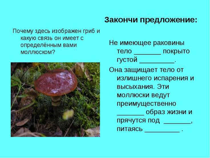 Закончи предложение: Почему здесь изображен гриб и какую связь он имеет с опр...