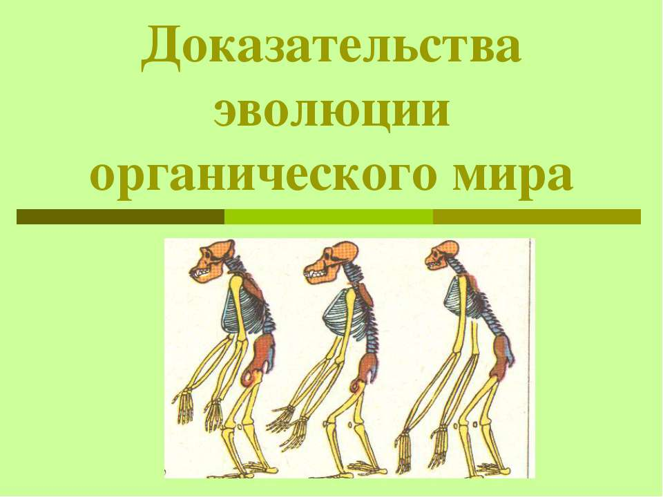 Доказательства эволюции органического мира