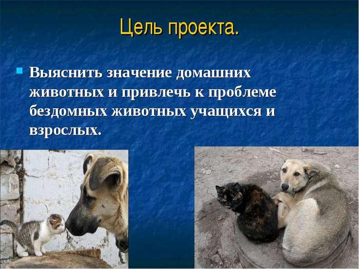 Выяснить значение домашних животных и привлечь к проблеме бездомных животных ...