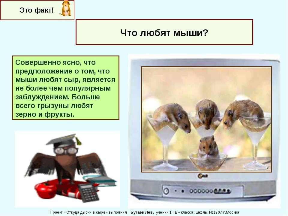 Это факт! Что любят мыши? Совершенно ясно, что предположение о том, что мыши ...