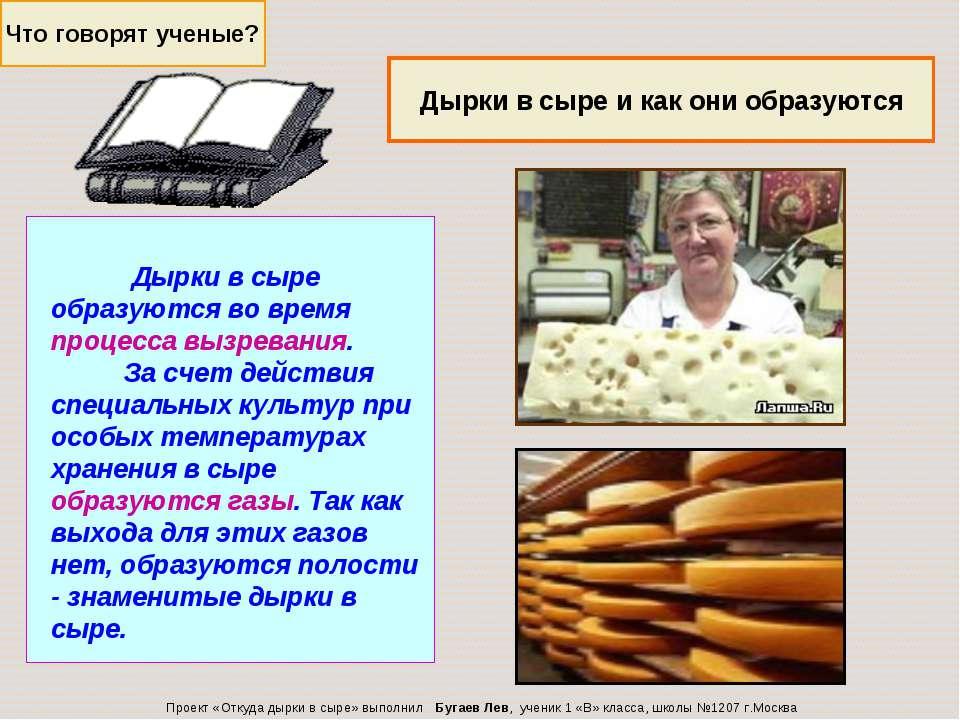 Что говорят ученые? Дырки в сыре и как они образуются Проект «Откуда дырки в ...