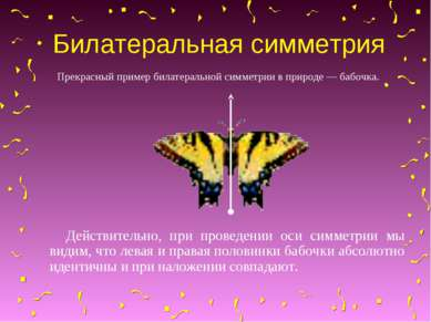 Билатеральная симметрия Прекрасный пример билатеральной симметрии в природе —...