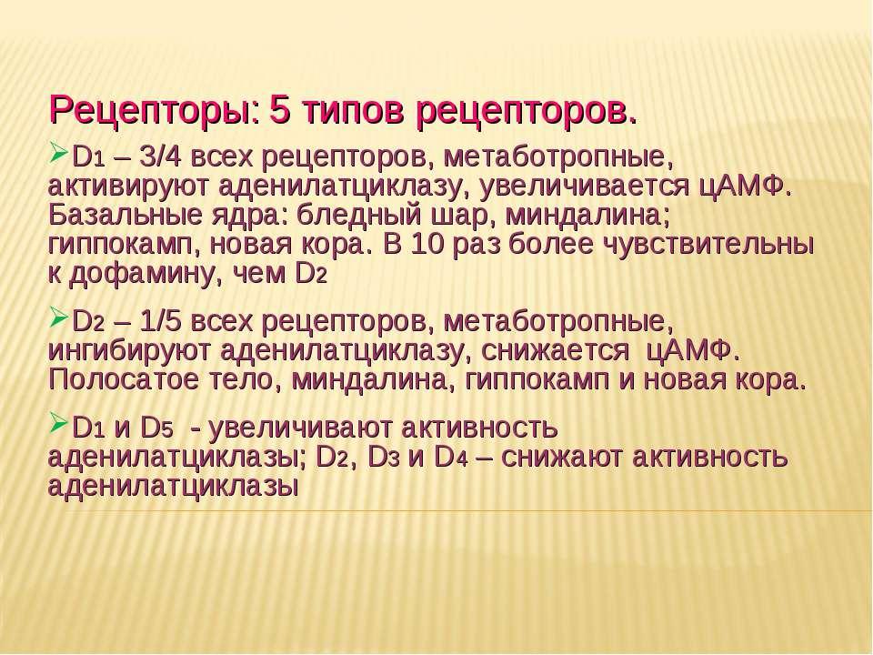 Дневное отделение фармацевтического факультета Рецепторы: 5 типов рецепторов....