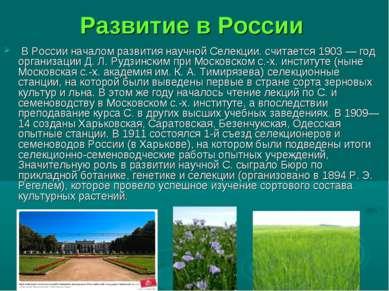 Развитие в России В России началом развития научной Селекции. считается 1903 ...