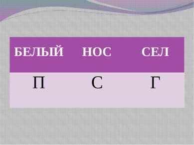 БЕЛЫЙ НОС СЕЛ П С Г