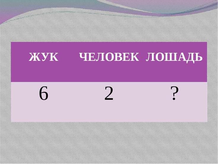 ЖУК ЧЕЛОВЕК ЛОШАДЬ 6 2 ?