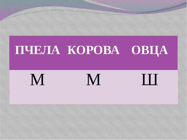 ПЧЕЛА КОРОВА ОВЦА М М Ш