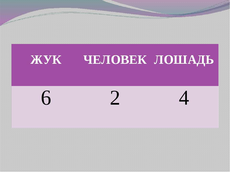 ЖУК ЧЕЛОВЕК ЛОШАДЬ 6 2 4