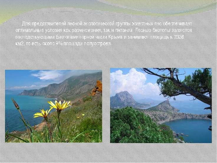 Для представителей лесной экологической группы животных лес обеспечивает опти...