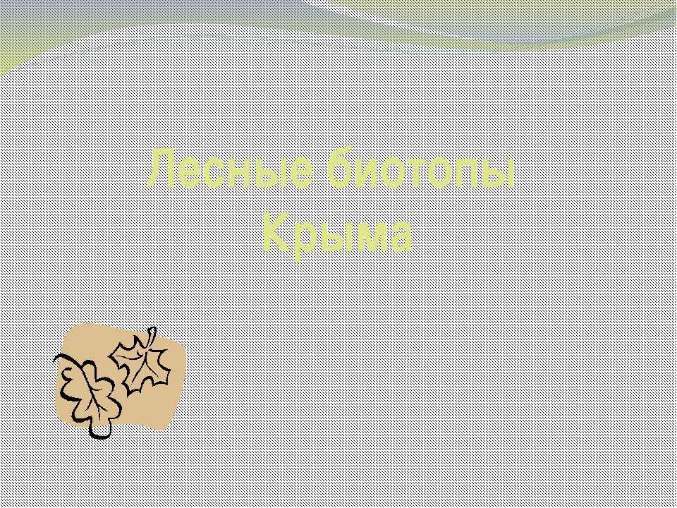 Лесные биотопы Крыма