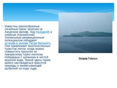 Известны разнообразные лечебные грязи: морские (в Амурском заливе, под Находк...