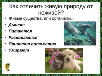 Как отличить живую природу от неживой? Живые существа, или организмы: Дышат П...