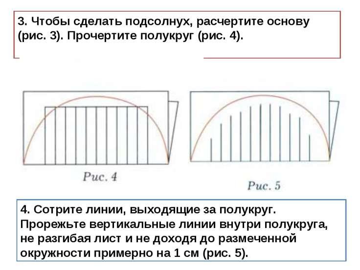 3. Чтобы сделать подсолнух, расчертите основу (рис. 3). Прочертите полукруг (...