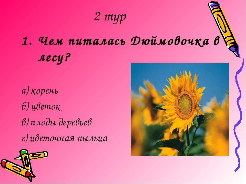 2 тур Чем питалась Дюймовочка в лесу? а) корень б) цветок в) плоды деревьев г...