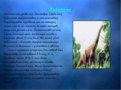 Животные Значительно развились динозавры. Среди них выделяют ящеротазовых и п...