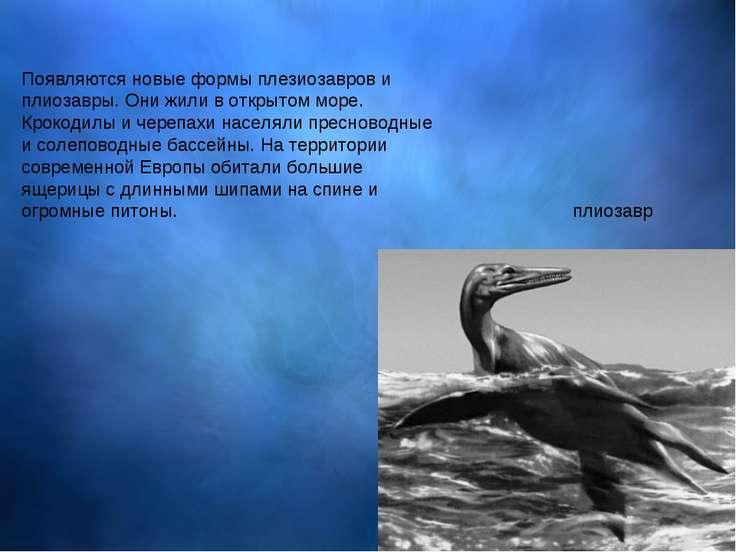 Появляются новые формы плезиозавров и плиозавры. Они жили в открытом море. Кр...