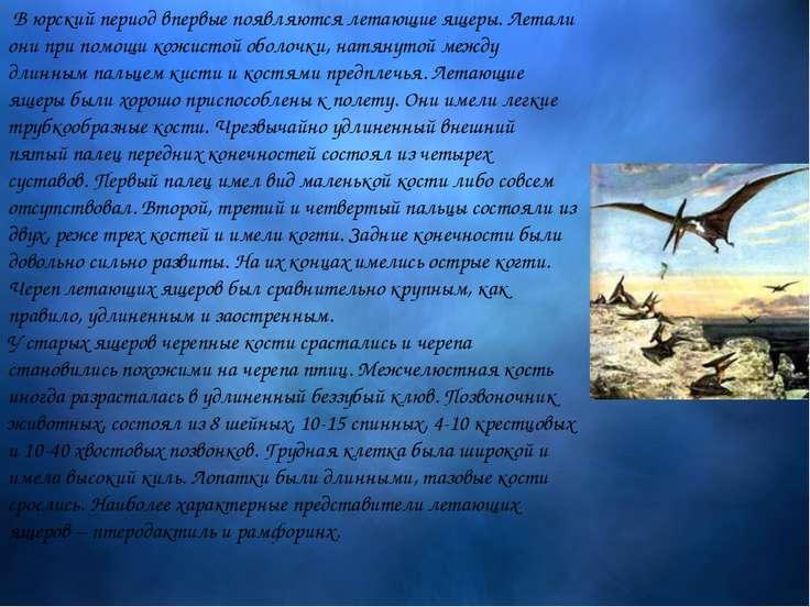 В юрский период впервые появляются летающие ящеры. Летали они при помощ...