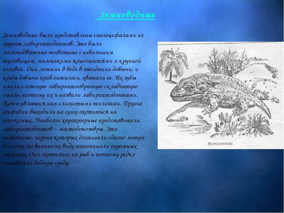 Земноводные были представлены стегоцефалами из группы лабиринтодонтов. Это бы...