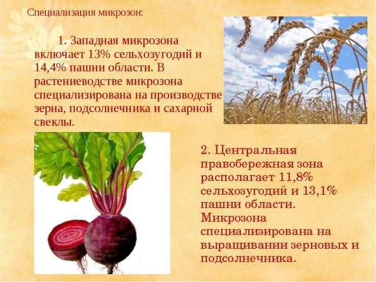 Специализация микрозон: 1. Западная микрозона включает 13% сельхозугодий и 14...
