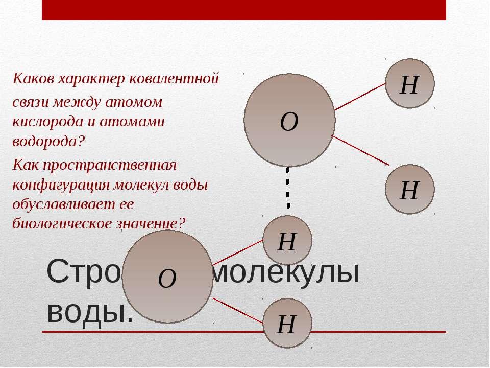 Строение молекулы воды. О H H H H O Каков характер ковалентной связи между ат...