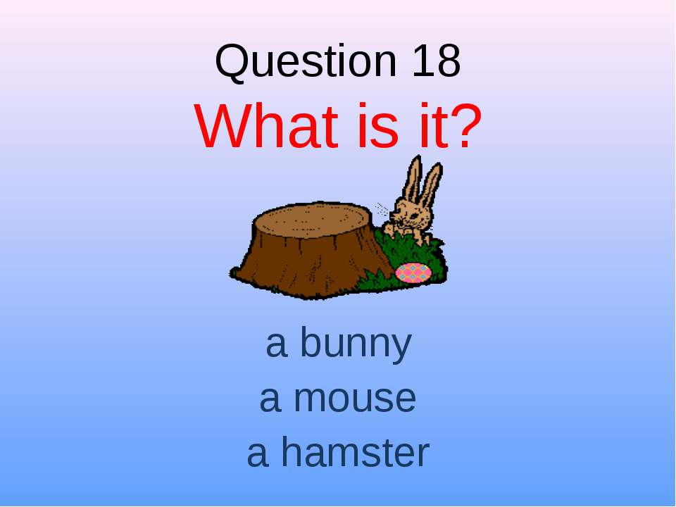 Question 18 What is it? a bunny a mouse a hamster