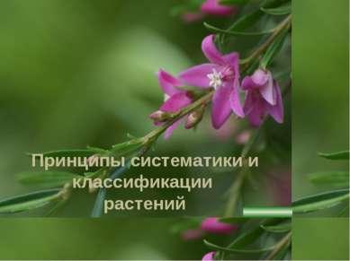 Принципы систематики и классификации растений