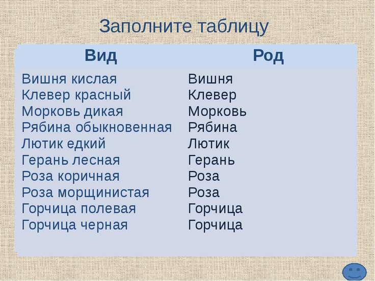http://static.diary.ru/userdir/2/5/4/0/254065/53973017.jpg ромашки аптечная h...