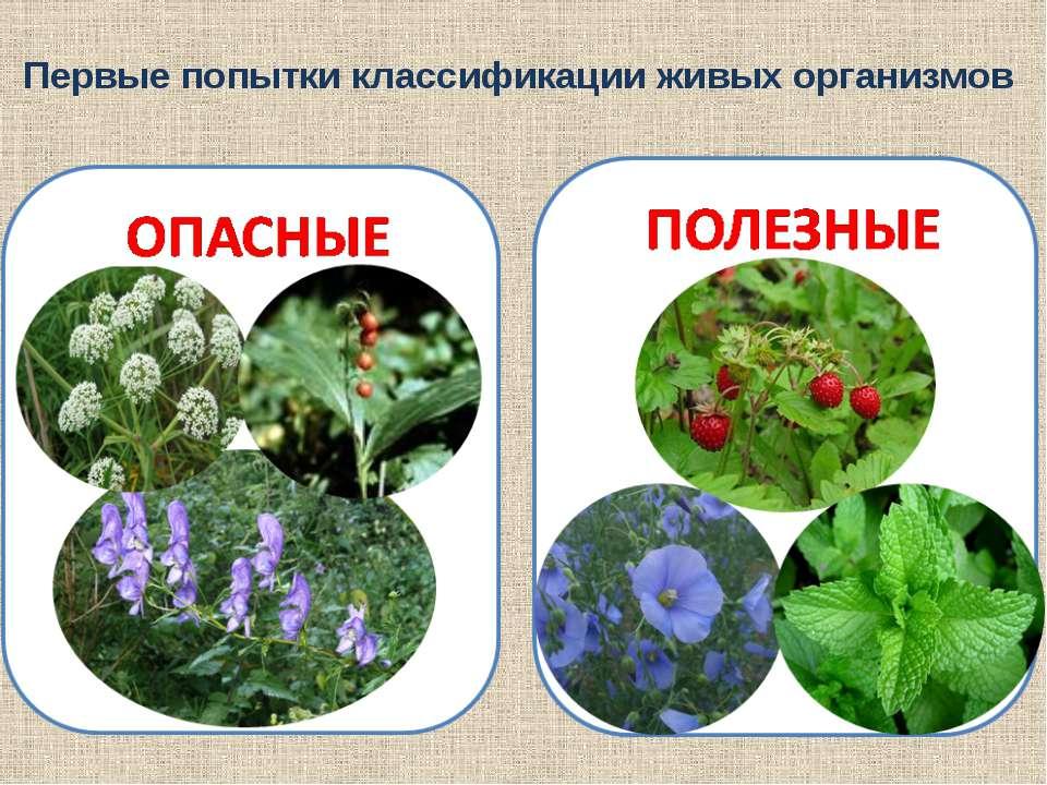 Линней считается создателем научной системы животных и растений. Он предложил...