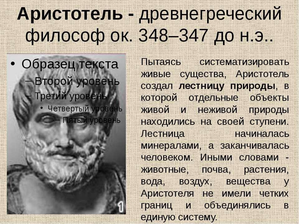 Аристотель - древнегреческий философ ок. 348–347 до н.э.. Пытаясь систематизи...