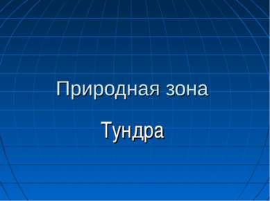 Природная зона Тундра Корниенко О.Ю.