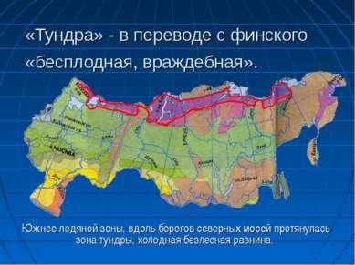 «Тундра» - в переводе с финского «бесплодная, враждебная». Южнее ледяной зоны...