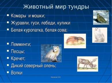 Корниенко О.Ю. Животный мир тундры Комары и мошки; Журавли, гуси, лебеди, кул...
