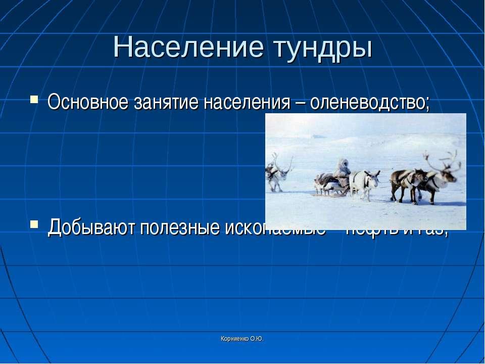 Корниенко О.Ю. Население тундры Основное занятие населения – оленеводство; До...