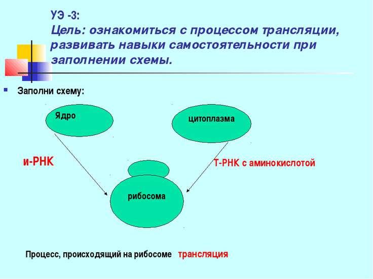 УЭ -3: Цель: ознакомиться с процессом трансляции, развивать навыки самостояте...