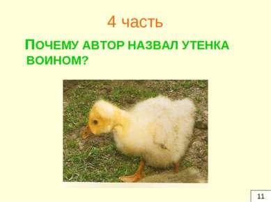 4 часть ПОЧЕМУ АВТОР НАЗВАЛ УТЕНКА ВОИНОМ? 11