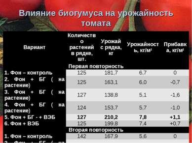 Влияние биогумуса на урожайность томата Вариант Количество растений в рядке, ...