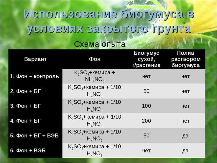 Использование биогумуса в условиях закрытого грунта Схема опыта Вариант Фон Б...