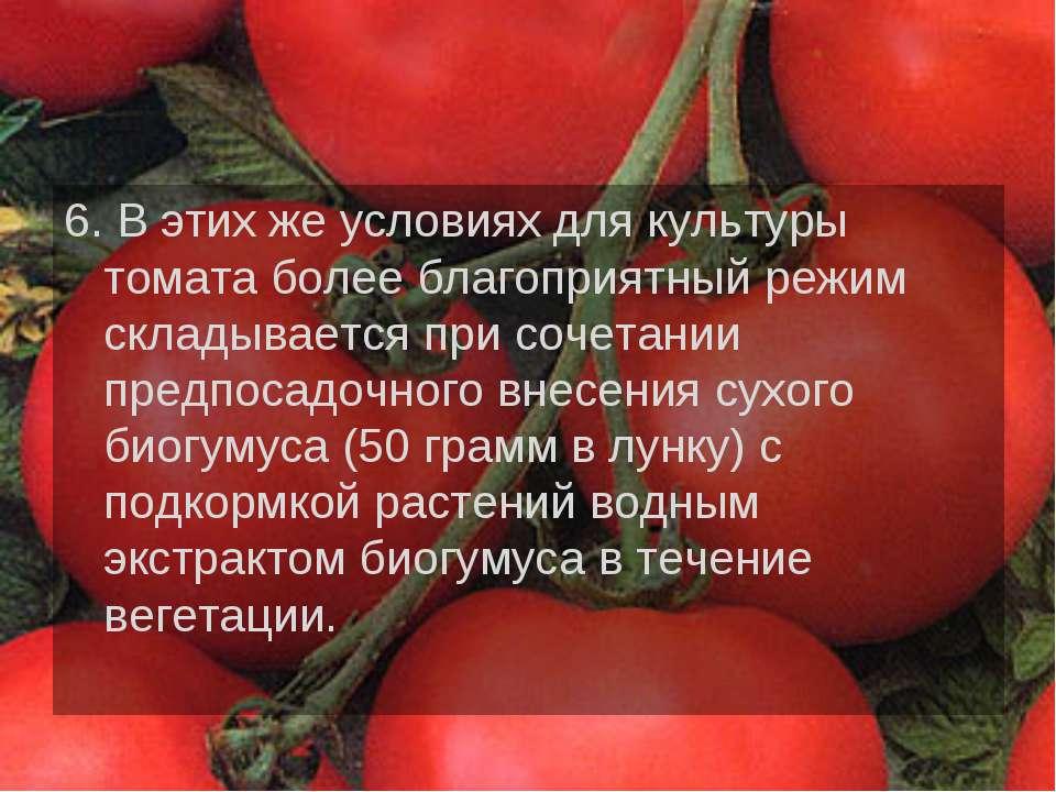 6. В этих же условиях для культуры томата более благоприятный режим складывае...