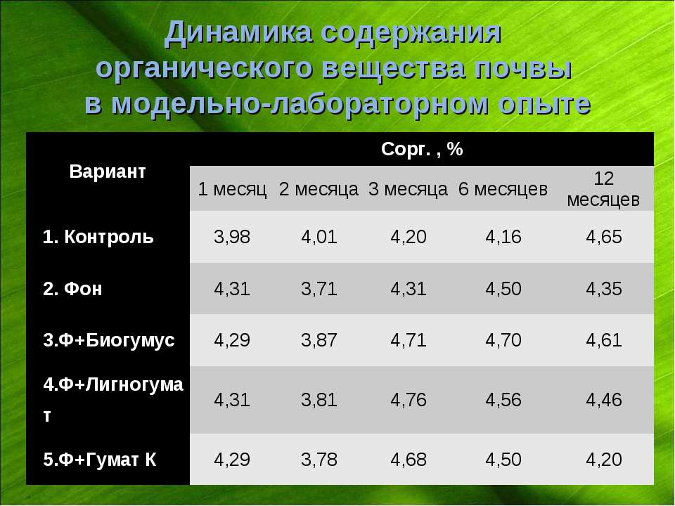 Динамика содержания органического вещества почвы в модельно-лабораторном опыт...