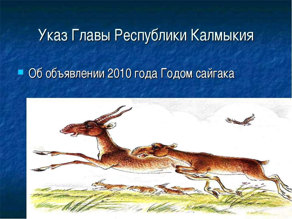 Указ Главы Республики Калмыкия Об объявлении 2010 года Годом сайгака