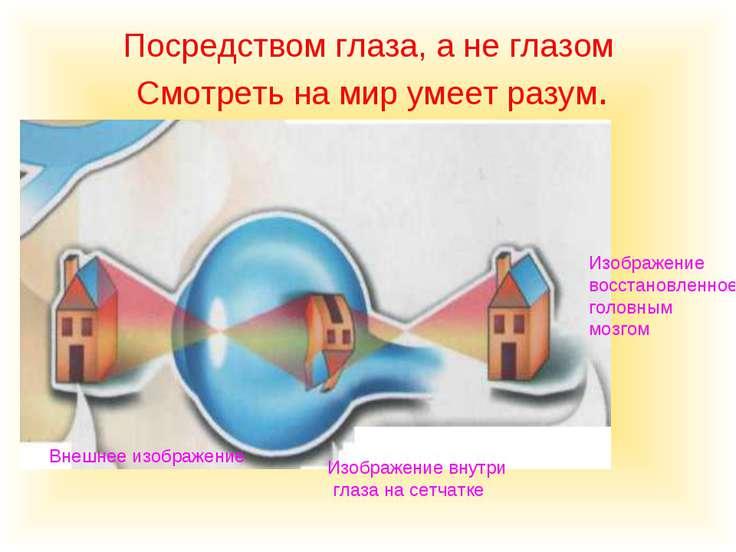 Посредством глаза, а не глазом Смотреть на мир умеет разум. Внешнее изображен...